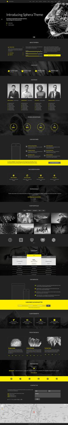 black, yellow, concept, web design, layout, modern, minimalist