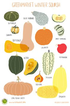 Grow NYC Winter Squash Poster #claudia #pearson
