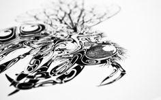 Airborne in defringe.com #airborne #print #defringe #illustration #animals #drawing #sketch