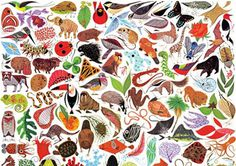 Animals - Charley Harper #charley #illustration #harper #animals