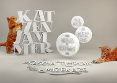 V5_kl #white #flyer #katzenjammer #cat #clean #dj #illustration #cats #music #3d #room #party