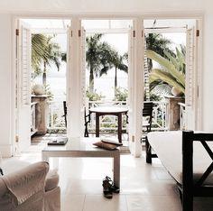 #palms #interior #exotic