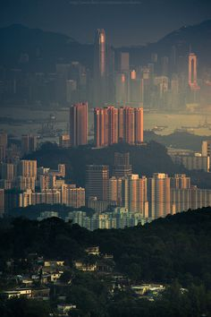 "CJWHO â""¢ (Tai Mo Shan country park by CoolBieRe â""¢ Tai Mo...) #kong #cityscape #landscape #architecture #hong #view"