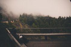 Likes | Tumblr #balcony #fog #tree