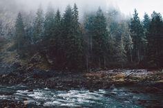 beyond thr pines