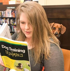 Most Dog Friendly Stores in America - Barnes and Noble