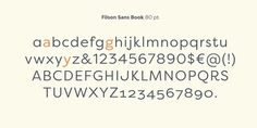 Filson Pro Font Poster
