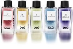 D&G ANTHOLOGY #fragrance #line