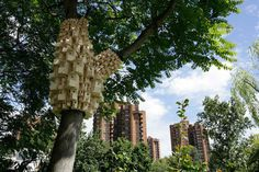 spontaneous_city_london_fieldworks2 #birdhouse