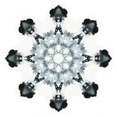 Rorschach Mandalas « Variations on a Theme #illustration #rorschach