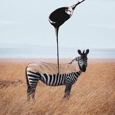 Playful and Dreamlike Photo Manipulations by Phuoc Nguyen