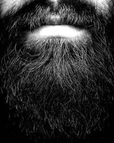 Hiding In Plain Sight #beard