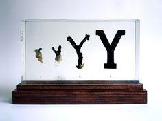 Evolution of Type, Exhibit 17 & 19 on the Behance Network #balsa #leaf #design #organic #evolution #type #wax