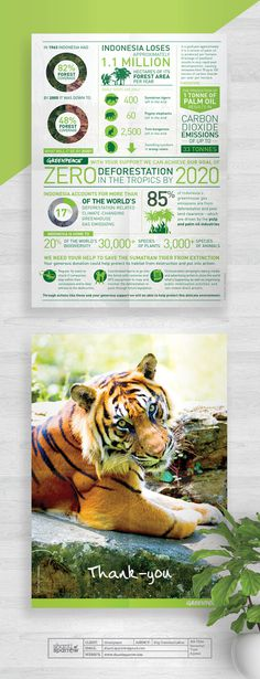 Design by Shanti Sparrow Client: Greenpeace Project Name: Tiger Appeal #Design #graphicdesign #illustration #layout #environmental #typogra