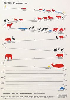 Vintage Visual Language: The Story of Isotype | Brain Pickings