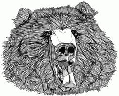 Luke Dixon Artist #bears #illustration #dukelixon