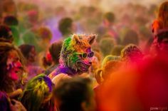 OPTIMIST by Devin Graham | 123 Inspiration #video #colors #filmmaker #optimist #devin #graham