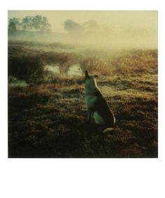 Spilt Milk Andrei Tarkovsky's Polaroids #andrei #photography #cinema #tarkovsky #poloroid