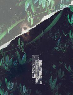 Emon Toufanian | PICDIT