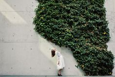 Katja Kemnitz #photo #wall #green
