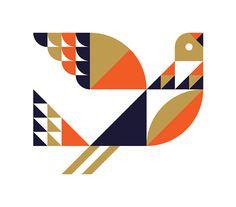 Bird - Ty Wilkins #ty #wilkins #bird