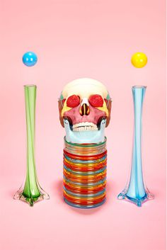Hidden Leisure » Installation #hidden #leisure #surreal #skull #still #life