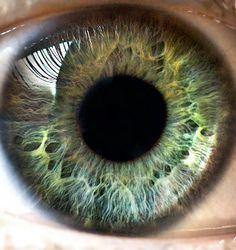my eye #eye #iris #auge #macro