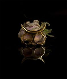 Add some edge to your hands with this tusk inspired double ring. Designed with wild bulls in mind this knuckleduster will be a strong yet el #rose #roses #black #jewellery #gold #doublering #jewelery