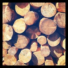 All sizes | Untitled | Flickr - Photo Sharing! #posts #wood #photography #grain #logs
