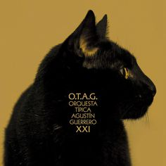 OTAG XXI on Behance #album #edition #packaging #argentina #design #cat #otag #mirror #music #tango #special