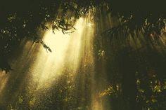 Navis Photography #photography #rain