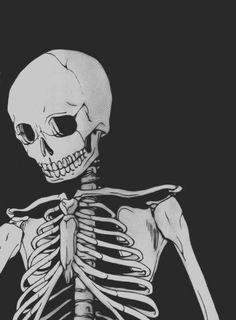 Poltergeist #skull #skeleton