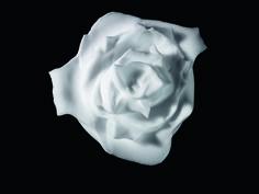Helmut Stelzenberger #skincare