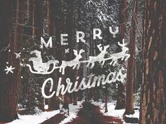 Merry Christmas #christmas #lettering