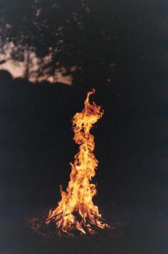 fire #forest #fire #heat #hot #flame