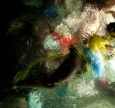 Reckless Unbound by Christy Lee Rogers #inspiration #photography #underwater