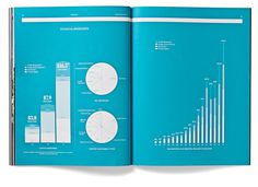 Blackstone AR 2011 #print #annual report #information #charts #addison
