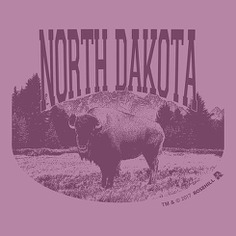 Illustration for t-shirt #tshirt #layout #illustration #buffalo #animal #North Dakota #vintage