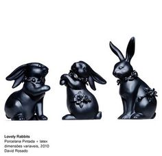 lovely rabbits by David Rosado
