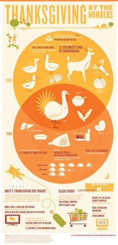 Thanksgiving by the Numbers Infographic #infographic #holiday #history #thanksgiving