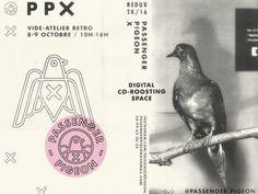 Passenger Pigeon X