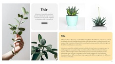 Kayla Google Slides Template by Rizvana | GraphicRiver