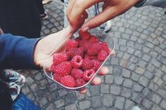 #fleamarket #france #raspberry #fruit #healthy #pleasure #family #summer #food #market #north #coast