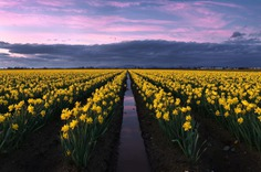 Beautiful Travel and Landscape Photography by Ken Furman