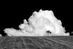 A live #white #travel #black #landscape #photography #nature #and #bw