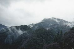 Jérémy Barniaud #mountain #fog #barniaud #sky #dust #earth #photography #nature #forest #dark #jã©rã©my
