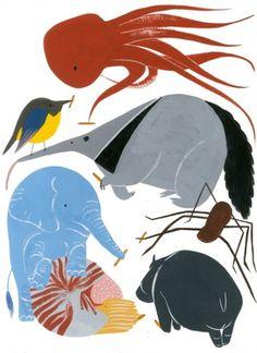 Naïmoka | Haunted by beauty #illustration #animals