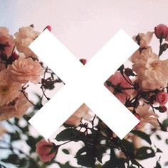 what's your kind of adventure ? #xx