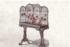 Rebirth - by Quentin Deronzier #artwork #collage #flowers http://quentinderonzier.com/Rebirth