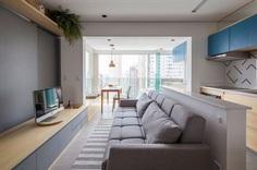 38 sqm Apartment Renovated in Sao Paulo, Brazil 1